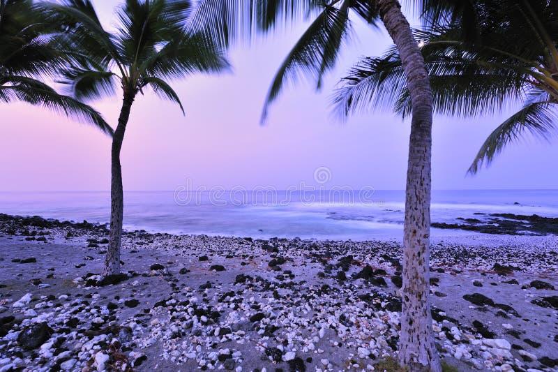 Petite plage de roche photos libres de droits