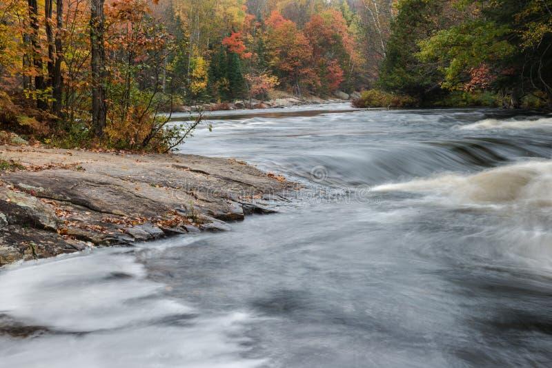 Petite rapide et forêt colorée d'automne à la rivière d'Oxtongue photo stock