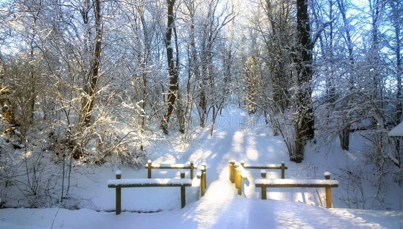 petite rivière couverte de neige Pont en bois dans la neige photographie stock libre de droits