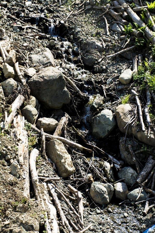 Petite rivière de montagne image libre de droits