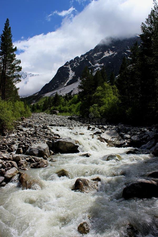 Petite rivière de montagne en l'Abkhazie photo libre de droits