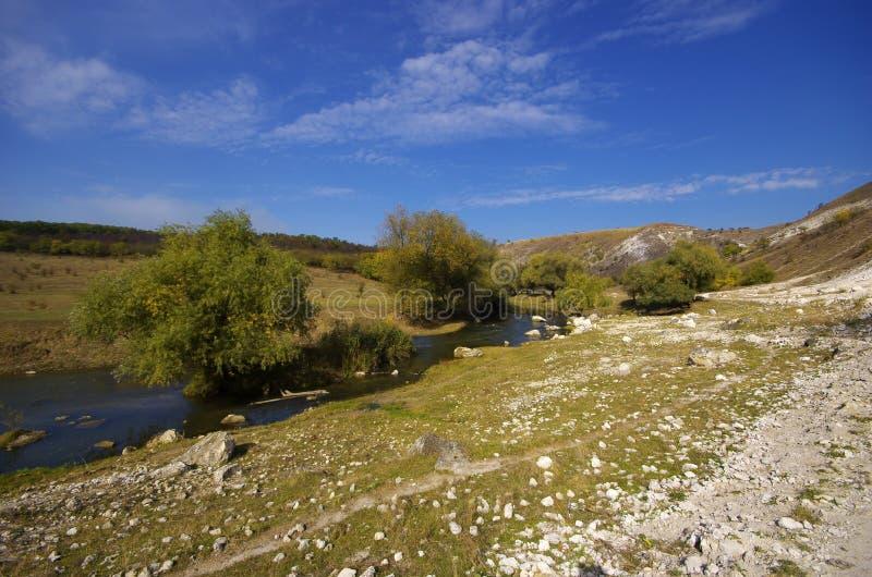 Petite rivière en montagnes photos libres de droits