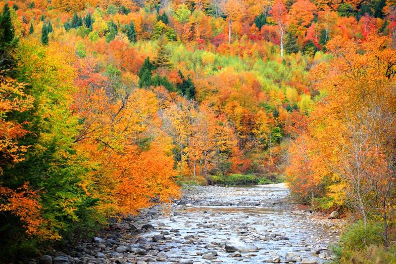 Petite rivière traversant le Vermont image libre de droits