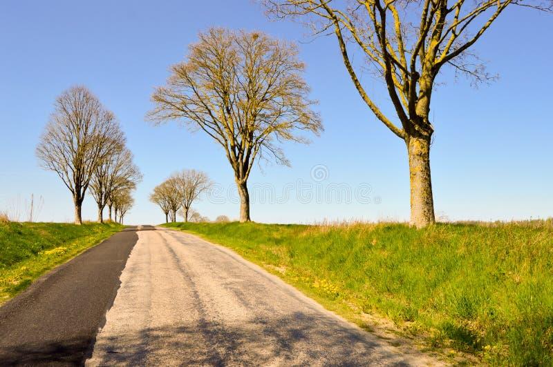 Petite route d'enroulement dans la campagne photo libre de droits