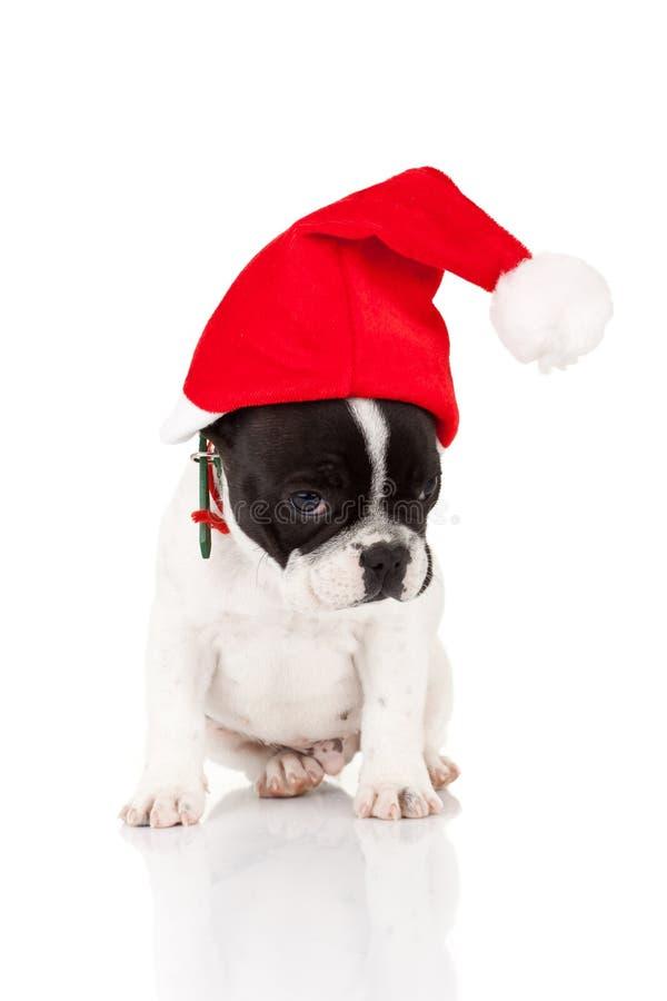 Petite Santa timide image libre de droits