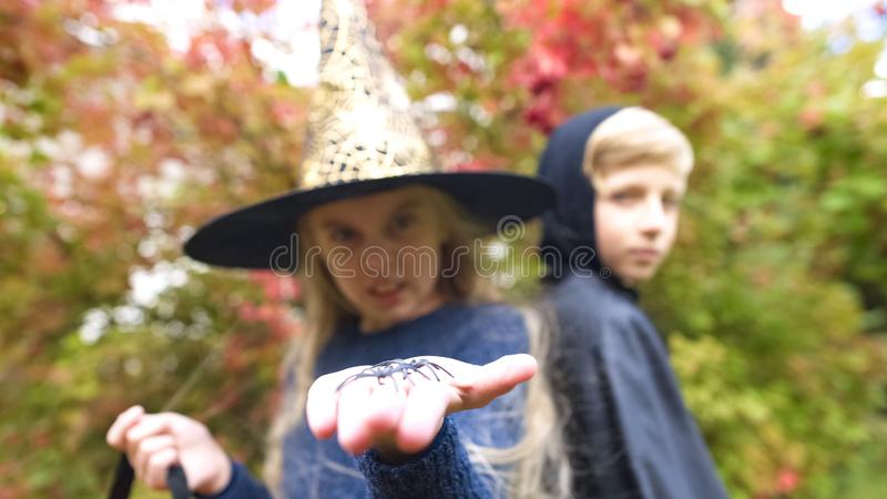 Petite sorcière montrant l'araignée de jouet dans l'appareil-photo, arachnophobia, crainte Halloween photos libres de droits