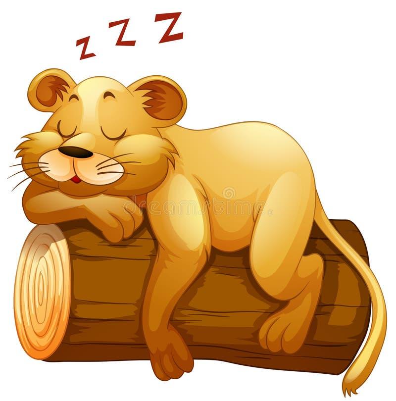 Petite tasse de lion dormant sur le rondin illustration libre de droits