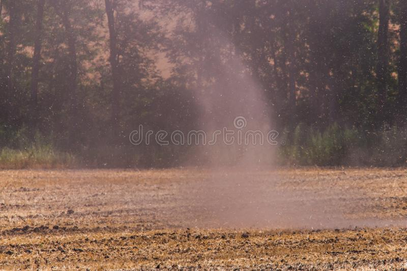 Petite tornade ou tourbillon avec la poussi?re dans un domaine photographie stock libre de droits
