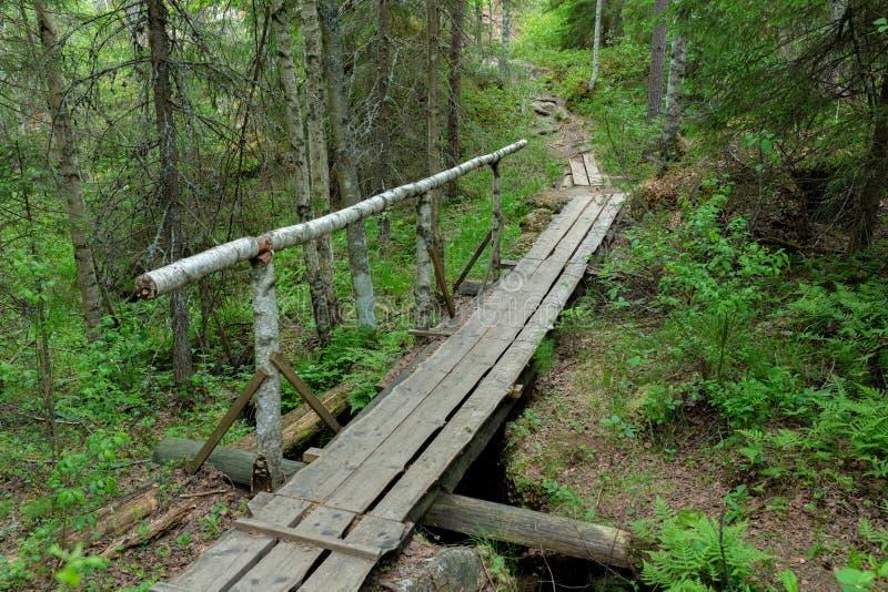 Petite traînée de caillebotis dans le paysage finlandais de forêt photographie stock