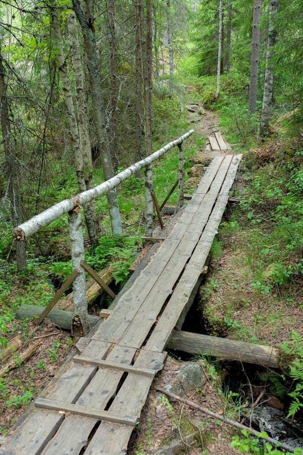 Petite traînée de caillebotis dans le paysage finlandais de forêt photos libres de droits