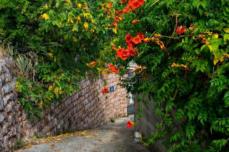 Petite ville européenne de belle rue Une petite ville près de la mer Méditerranée Mur en pierre, jardin vert avec des fleurs photo stock