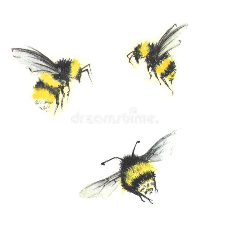 3 petites abeilles d'aquarelle photo stock