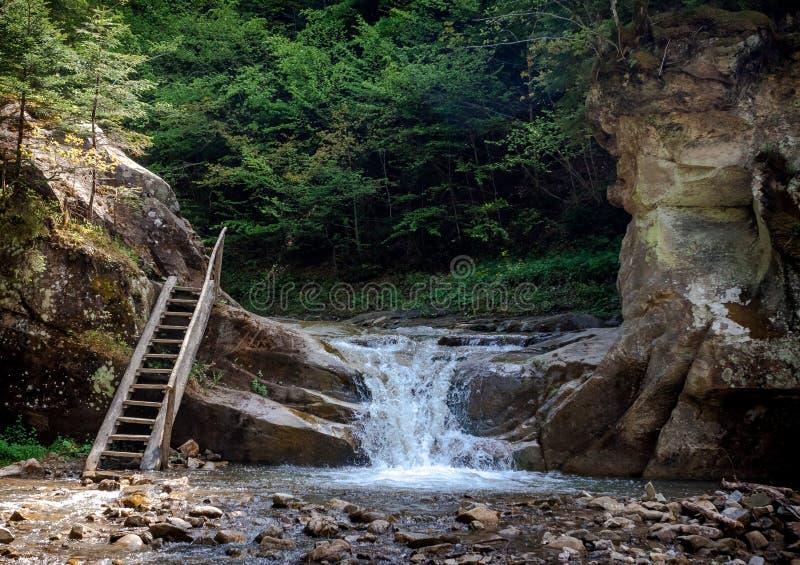 Petites cascade et échelle entre les roches dans une forêt de montagne images stock