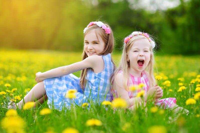 Petites filles adorables ayant l'amusement ensemble dans le pré de floraison de pissenlit image libre de droits
