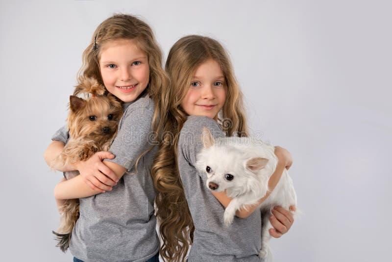 Petites filles avec des chiens d'isolement sur le fond gris Amitié d'animal familier d'enfant photographie stock libre de droits