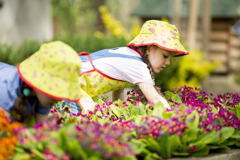 Petites filles dans le jardin photo stock