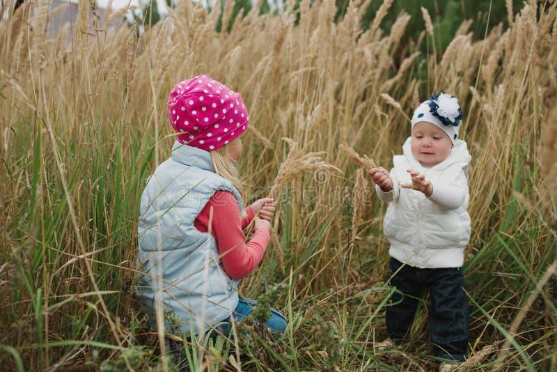 Petites filles en haut portrait d'herbe photo libre de droits