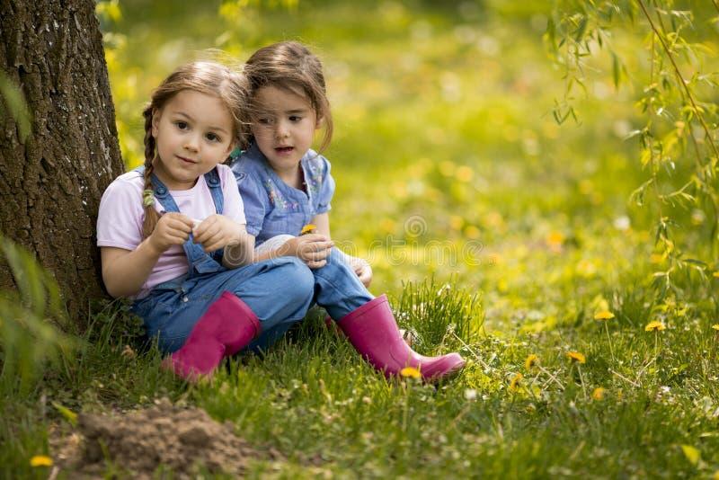 Petites filles mignonnes à la ferme image libre de droits