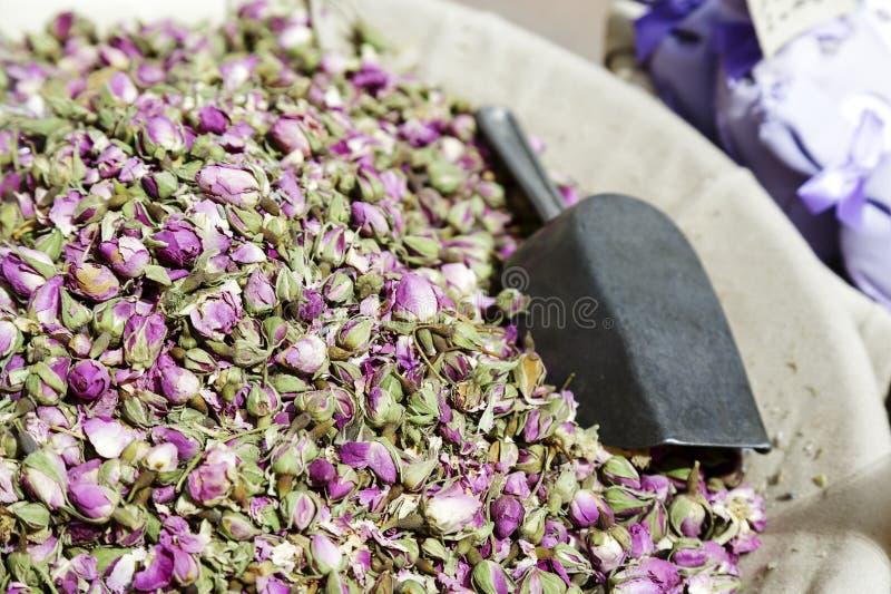 Petites fleurs, roses sèches images libres de droits
