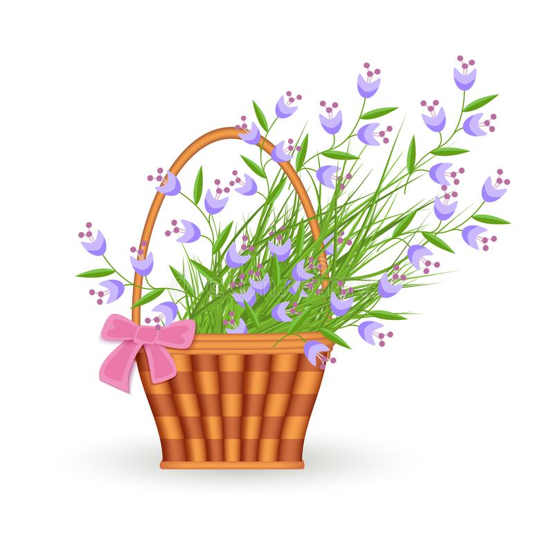 Petites fleurs sauvages bleues dans le panier en osier avec l'arc rose d'isolement sur le fond blanc illustration stock