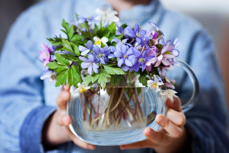 Petites mains, tenant le vase en verre avec le bouqu de fleur de ressort de forêt photographie stock