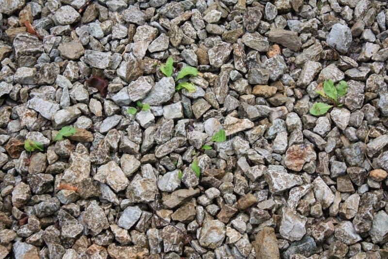 Petites pierres images stock