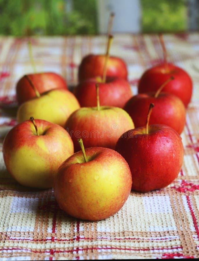 Petites pommes images stock