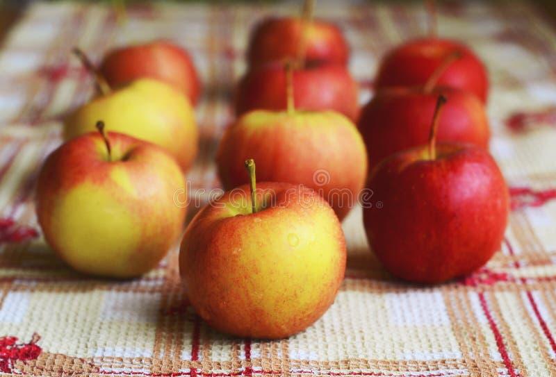 Petites pommes photographie stock libre de droits