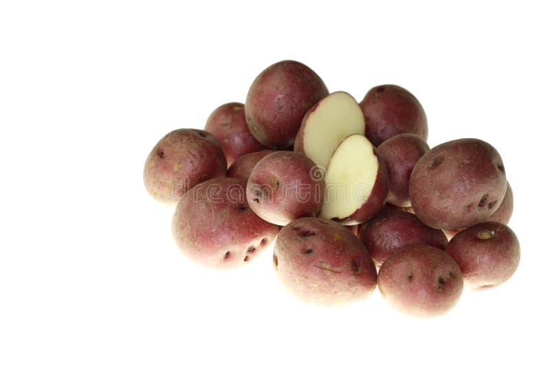 Petites pommes de terre rouges images libres de droits