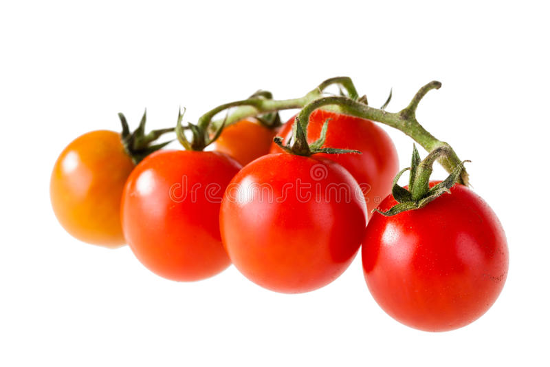 Petites tomates images libres de droits