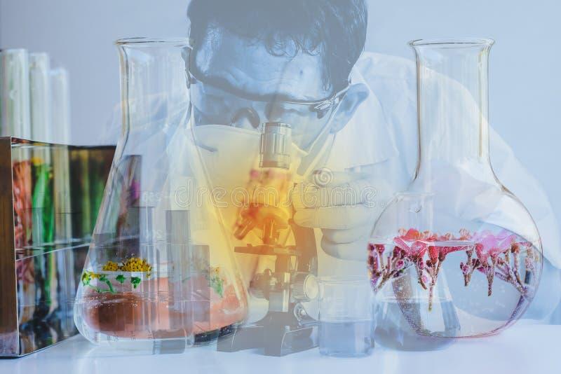 Petites usines dans le tube ? essai pour la recherche de m?decine de biotechnologie photo libre de droits
