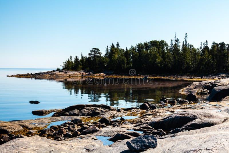 Petits baie et littoral de la mer blanche, océan arctique, Carélie, Russie photos stock