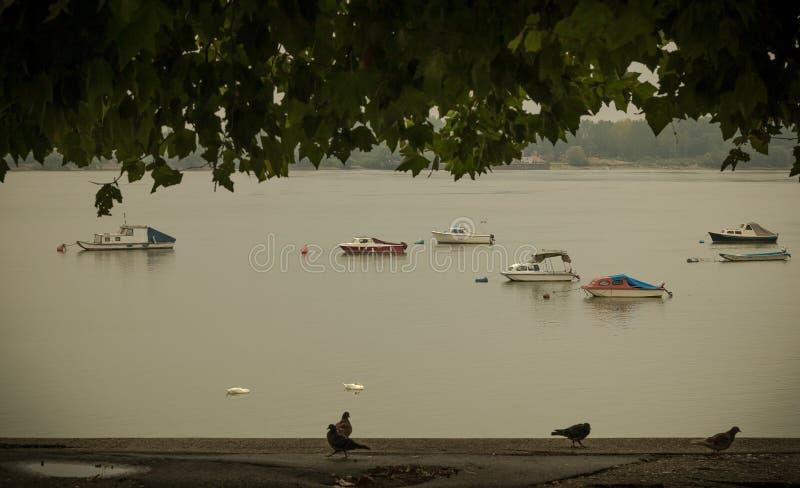 Download Petits bateaux de pêche image stock. Image du nautique - 77156723
