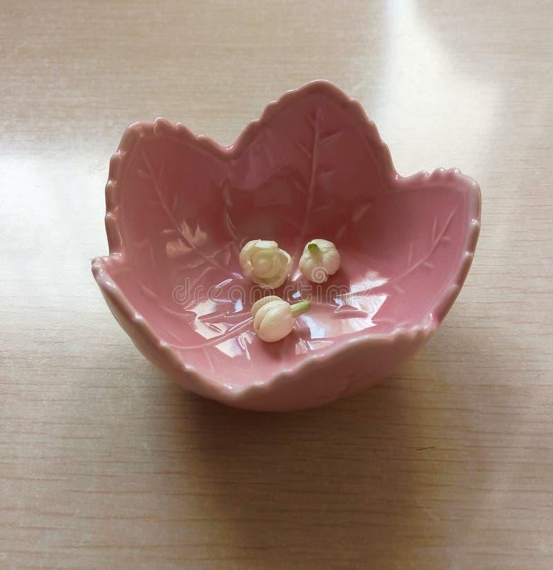 Petits bourgeons blancs de jasmin photos stock
