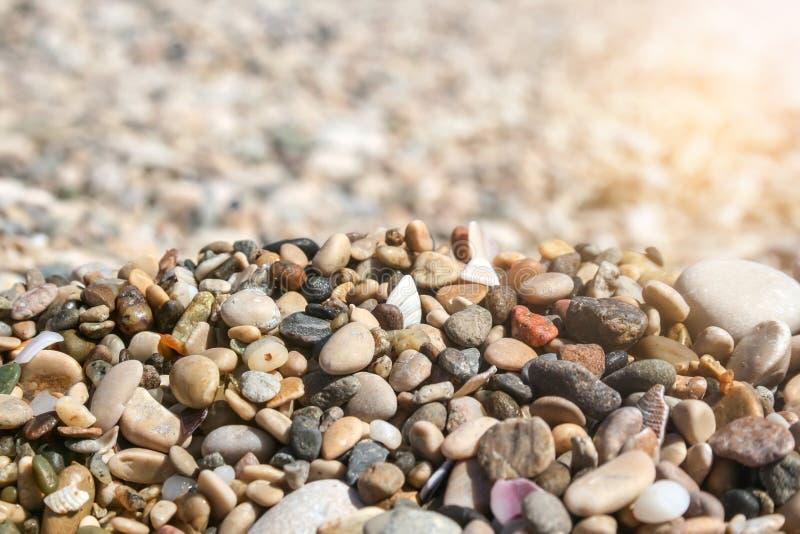 Petits cailloux et coquilles colorés de mer sur un fond brouillé un jour ensoleillé photo stock