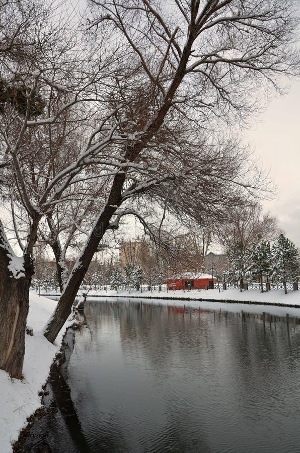 Petits cottage et arbres oranges sous la neige, photo stock