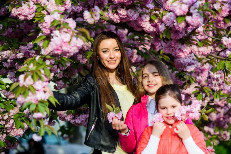 Petits enfants et fleur de mère au printemps soeurs heureuses en fleur de cerise Fleur de Sakura ?t? de famille Beaut? normale photos libres de droits