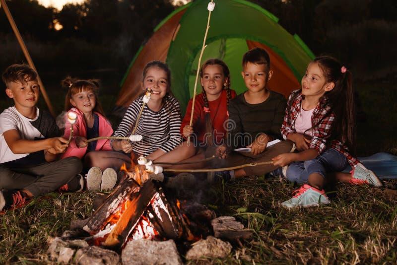 Petits enfants faisant frire des guimauves sur le feu photo libre de droits