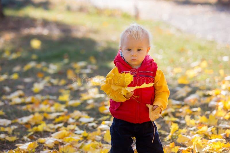Petits enfants heureux, bébé garçon, riant et jouant avec le congé image stock