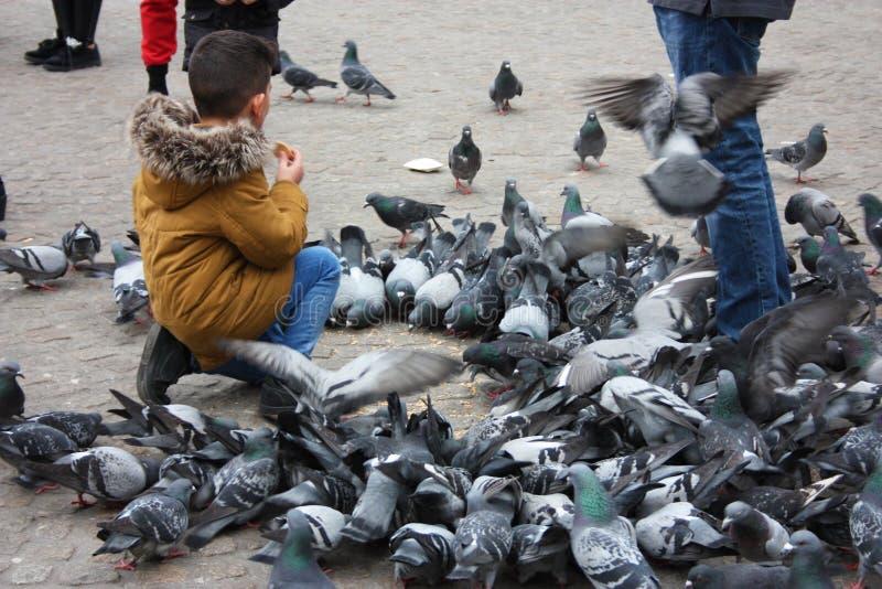 Petits enfants un jour d'hiver jouant dans une place dans une ville européenne Ils ont plaisir à chasser des pigeons et à les ali photo stock
