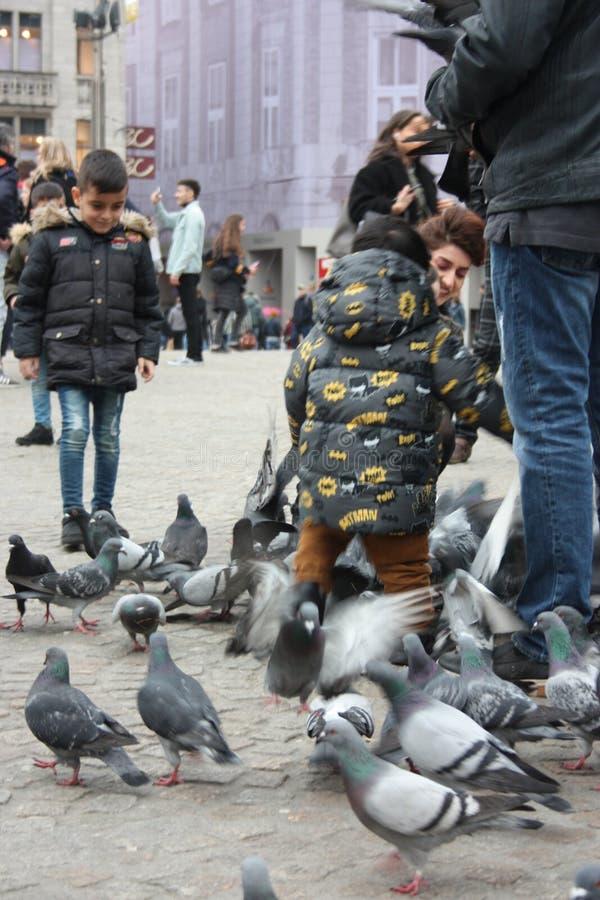Petits enfants un jour d'hiver jouant dans une place dans une ville européenne Ils ont plaisir à chasser des pigeons et à les ali photo libre de droits