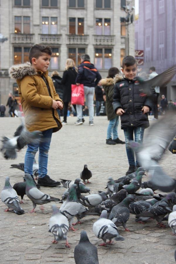 Petits enfants un jour d'hiver jouant dans une place dans une ville européenne Ils ont plaisir à chasser des pigeons et à les ali image stock