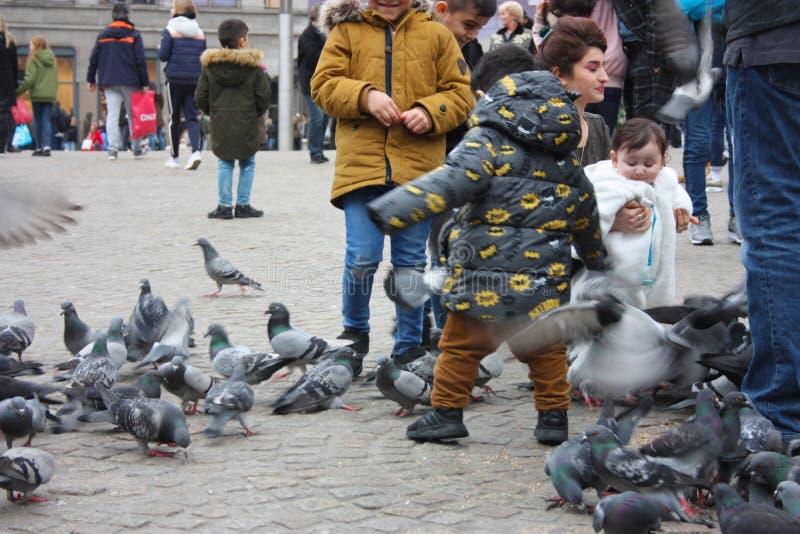 Petits enfants un jour d'hiver jouant dans une place dans une ville européenne Ils ont plaisir à chasser des pigeons et à les ali image libre de droits
