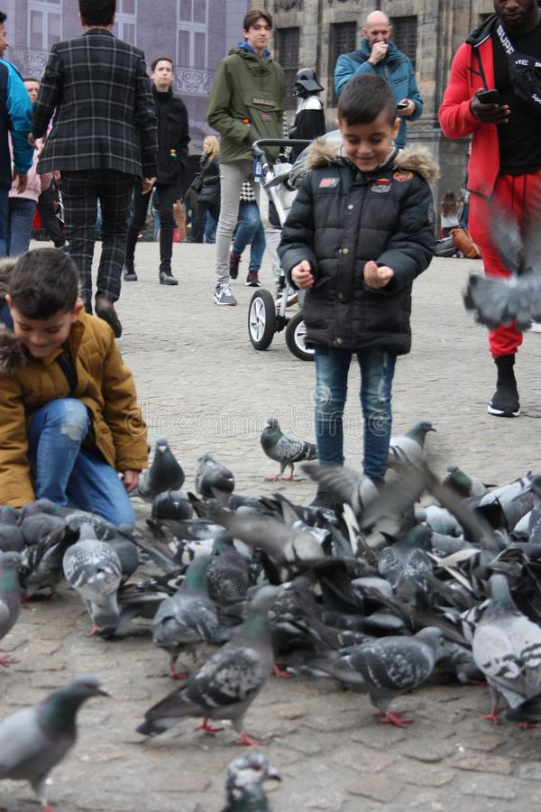 Petits enfants un jour d'hiver jouant dans une place dans une ville européenne Ils ont plaisir à chasser des pigeons et à les ali photographie stock libre de droits