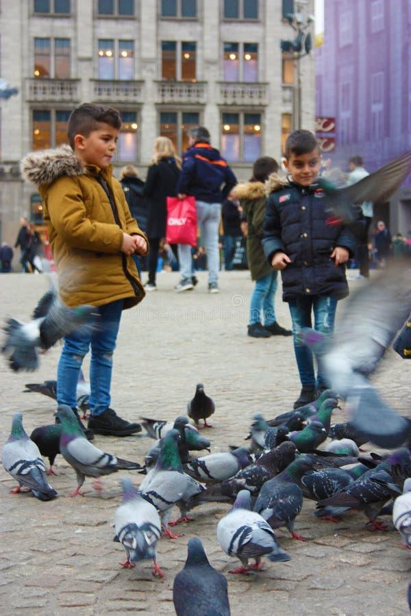 Petits enfants un jour d'hiver jouant dans une place dans une ville européenne Ils ont plaisir à chasser des pigeons et à les ali photographie stock