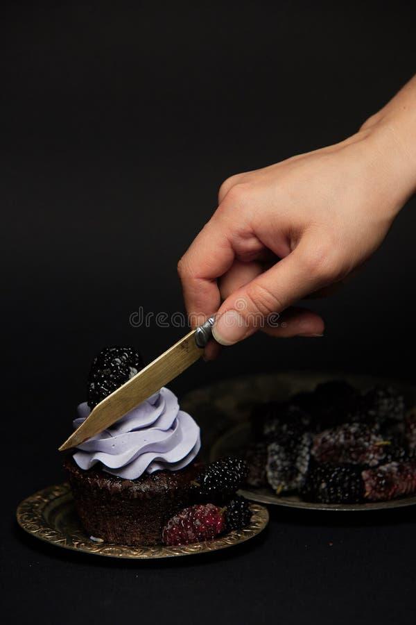 Petits gâteaux avec Blackberry image stock
