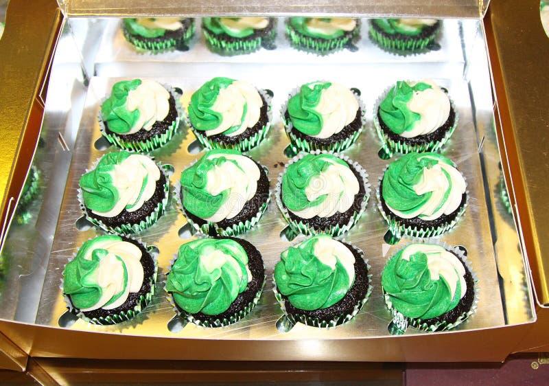 Petits gâteaux, chocolat douze assaisonné avec le givrage vert et blanc image libre de droits