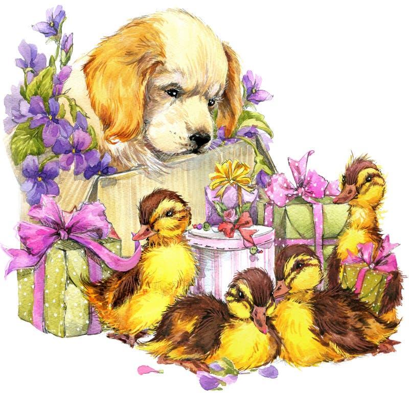 Petits oiseau, animaux familiers chiot, cadeau et fond de fleurs illustration libre de droits