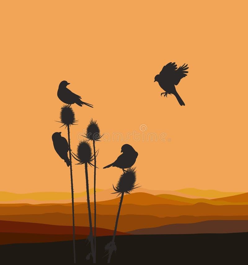Petits oiseaux sur un chardon illustration libre de droits
