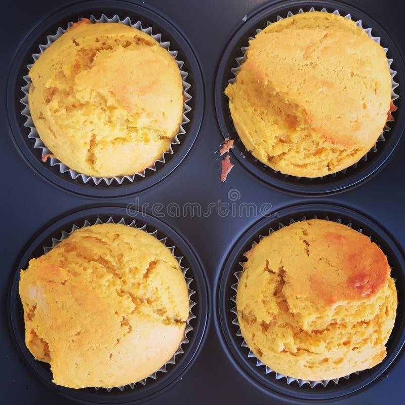 Petits pains d'épice de potiron photographie stock